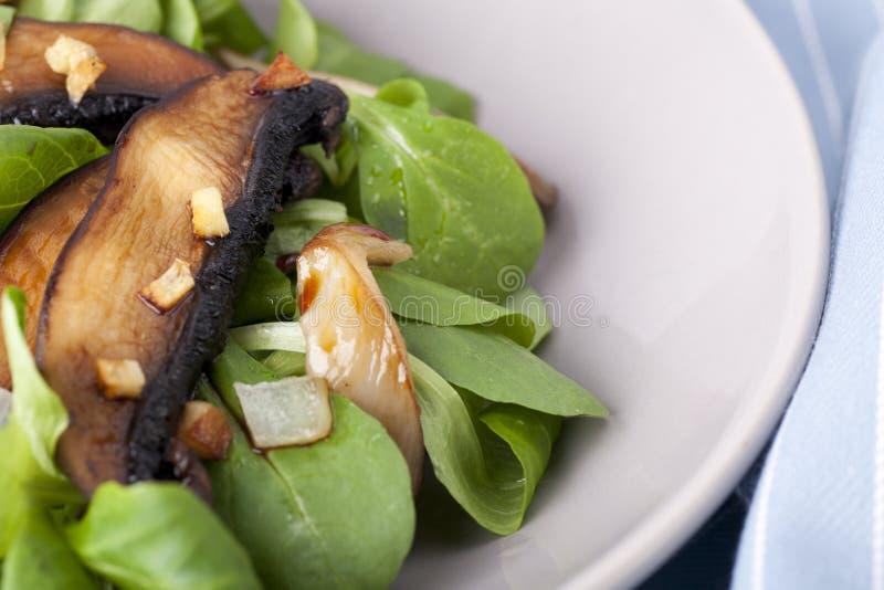 De warme Salade van de Paddestoel stock foto's