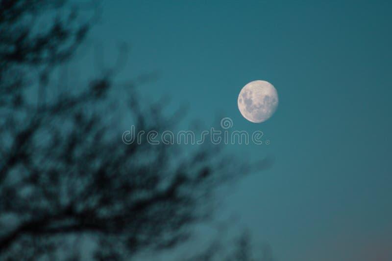 In de was zettende maan op een duidelijke nachthemel in Nieuw Zeeland royalty-vrije stock afbeelding