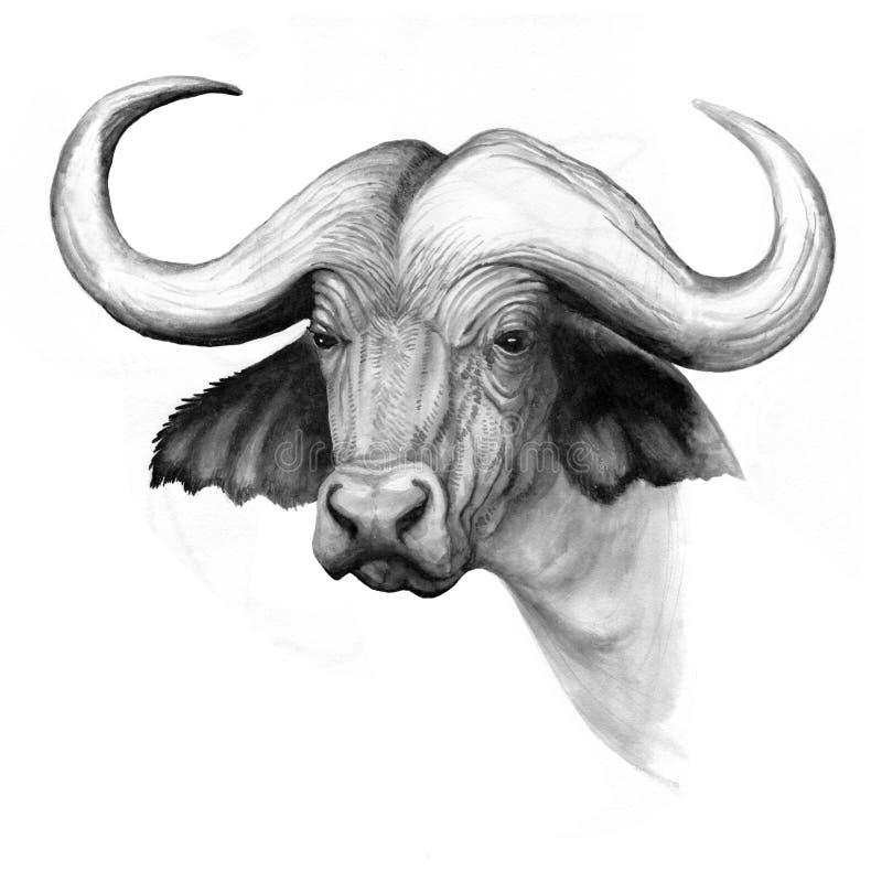 De waterbuffelhoofd van de inkttekening stock illustratie