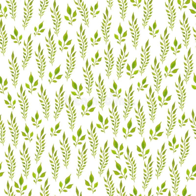 De Watercolourhand schilderde naadloos patroon Groene bladeren op witte achtergrond Gebruik voor verpakkend document, textiel, in royalty-vrije illustratie