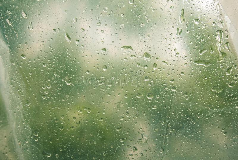 De waterdruppeltjes op doorzichtig, misted glas De dalingen van de de lenteregen op vertroebeld venster dicht omhoog Vage achterg stock foto's