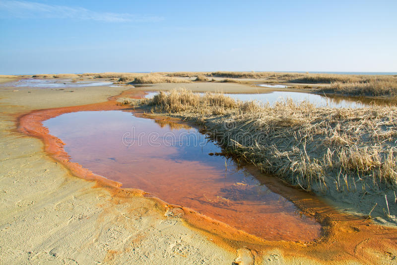 De waterlente in de duinen royalty-vrije stock fotografie