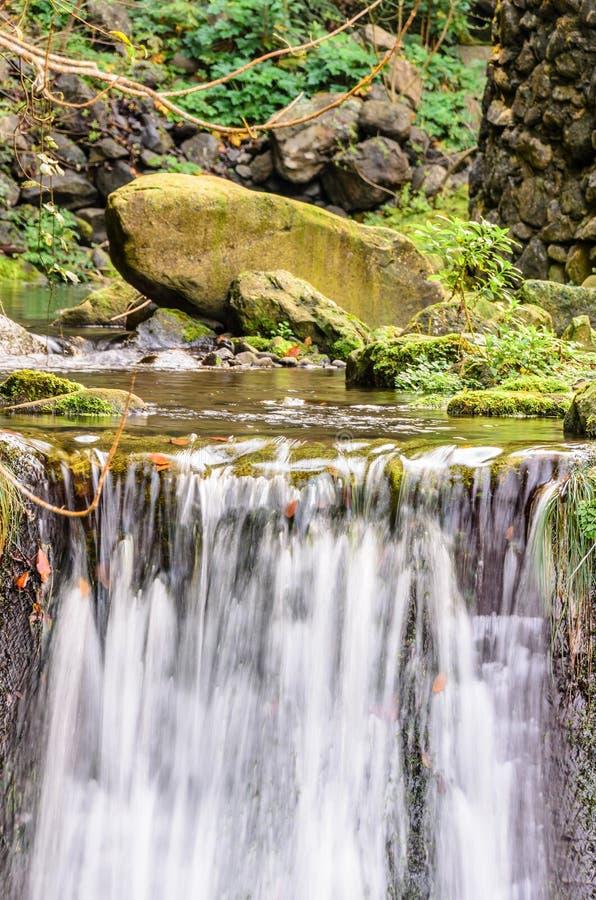 De waterloop van Ribeirofrio stock fotografie