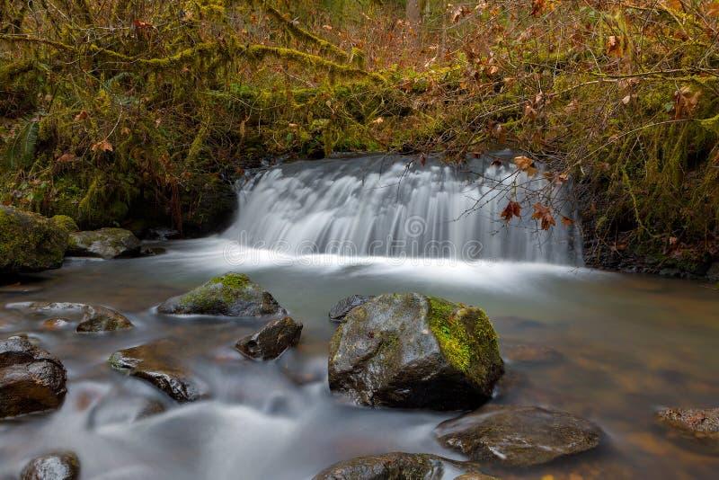 De waterval bij McDowell-Kreek valt het Park Portland van de Provincie OF royalty-vrije stock afbeelding