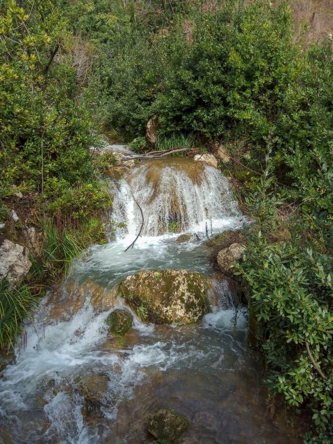 De waterval drapeert onderaan de bergkant over mos behandelde rotsen amid de bomen en de struiken stock foto