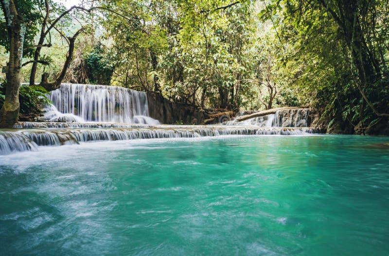 De waterval en de kleine koele vijver met turkoois water Fantastically mooie aard met duidelijke water bos en wilde wildernis stock fotografie
