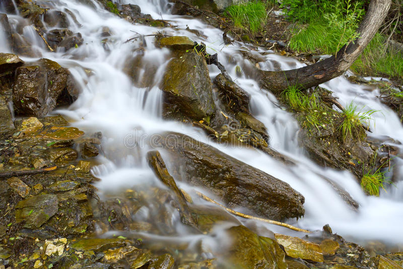 De waterval schommelt bos royalty-vrije stock afbeeldingen