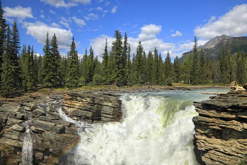 De waterval van Athabasca stock afbeelding