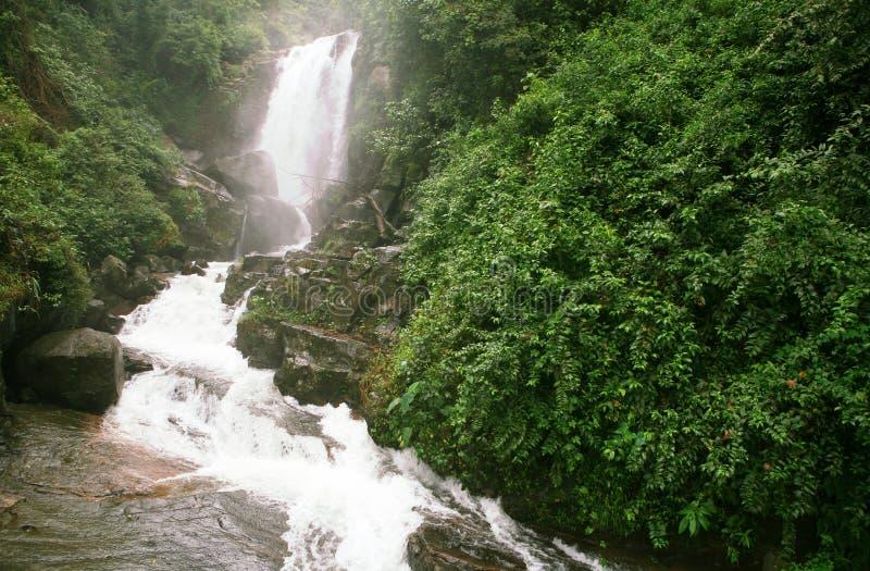 De waterval van de Dalingen van Ceylon Ramboda royalty-vrije stock fotografie