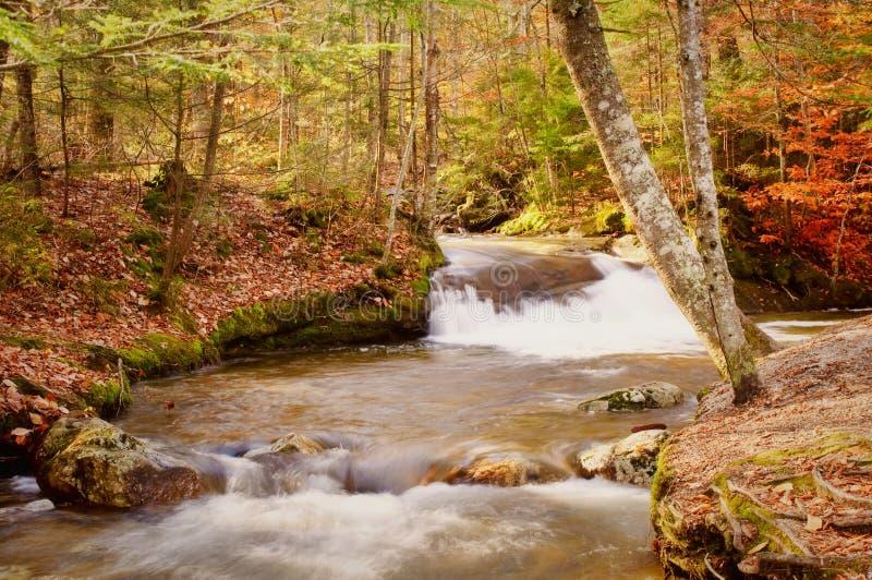 De Waterval van de herfst royalty-vrije stock afbeeldingen