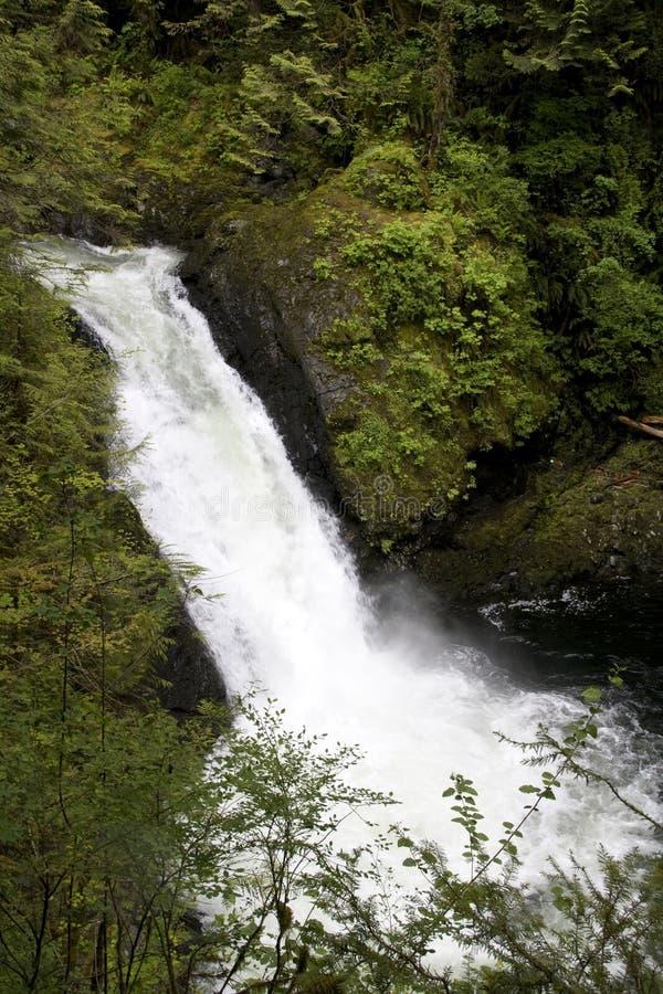 De waterval van de waterdaling stock afbeelding