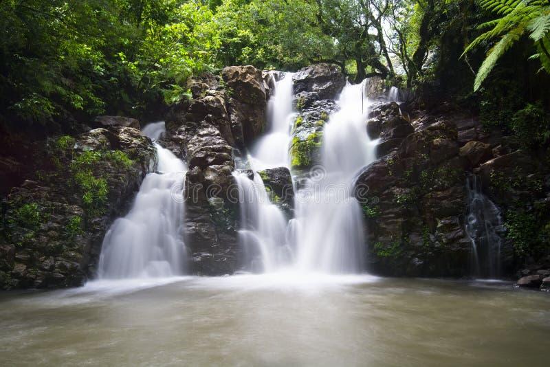 De Waterval van Fiji stock foto's