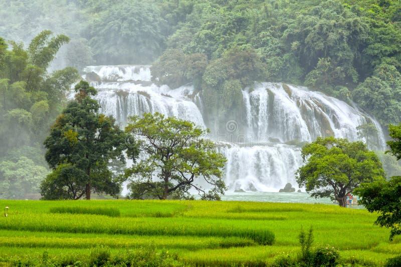 De waterval van Gioc van het padieveldenverbod royalty-vrije stock foto