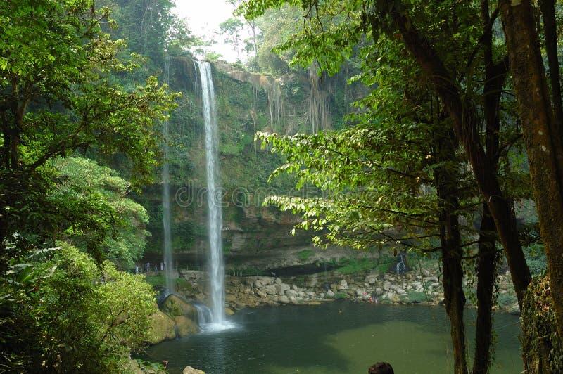 De Waterval van Ha van Misol, Mexico. stock fotografie