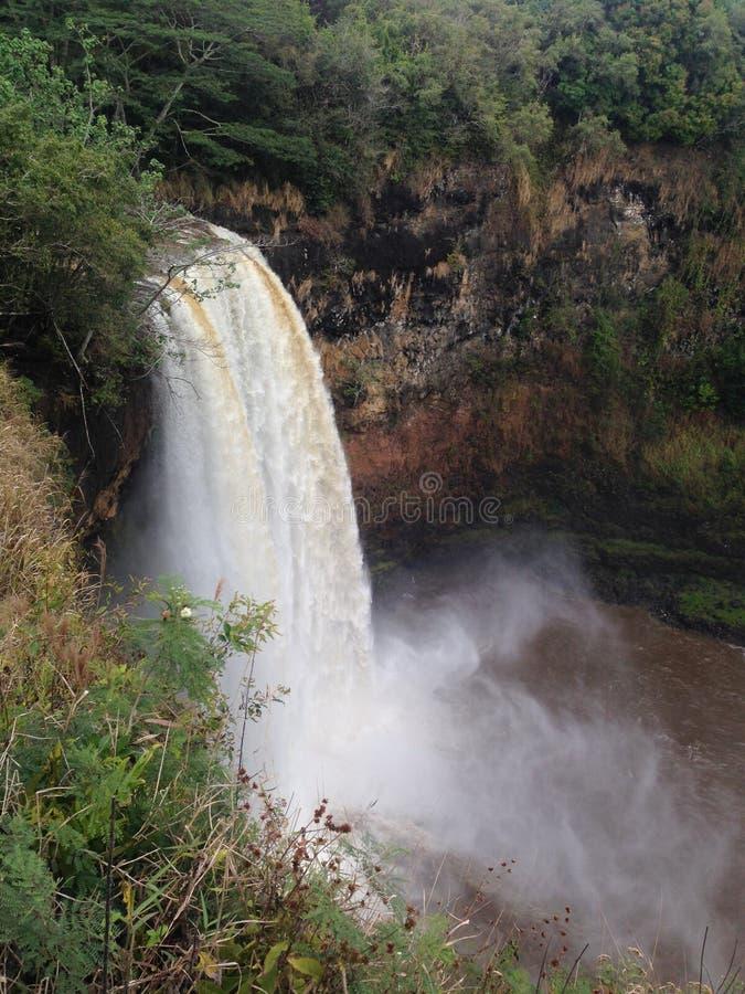 De waterval van Kauai Hawaï stock foto's