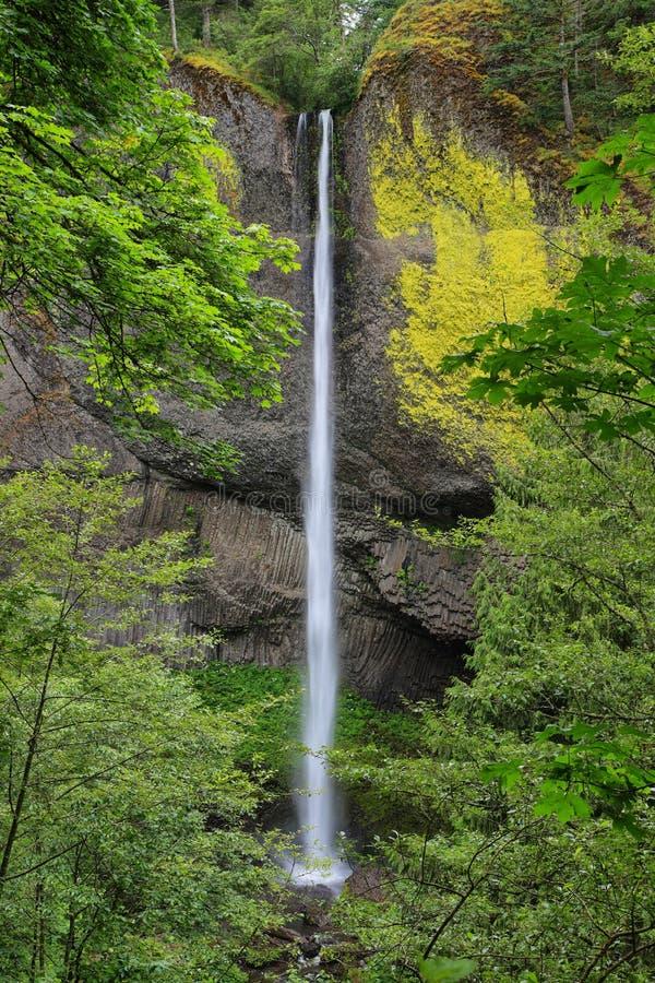 De waterval van Latourelldalingen, Oregon stock afbeeldingen