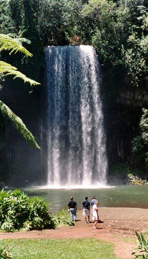 De Waterval van Milla van Milla - Australië stock fotografie