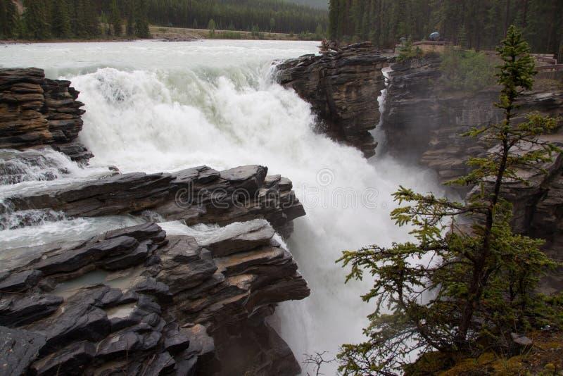 De waterval van Rockies royalty-vrije stock fotografie