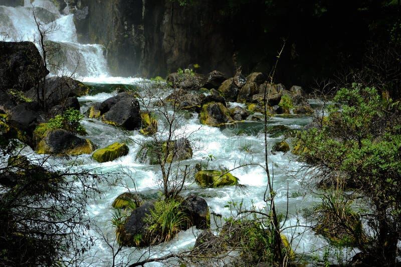 De Waterval van Tarawera stock afbeelding