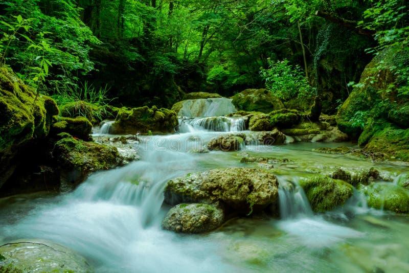 De watervallen van de bergrivier stock fotografie