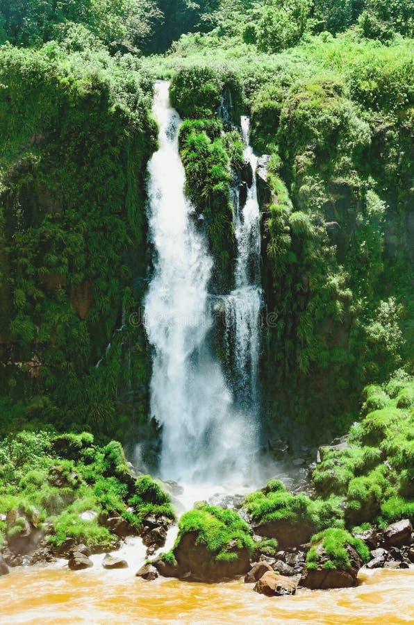 De watervallen van Cataratas do Iguacu op de stad van Foz doen Iguacu stock afbeelding