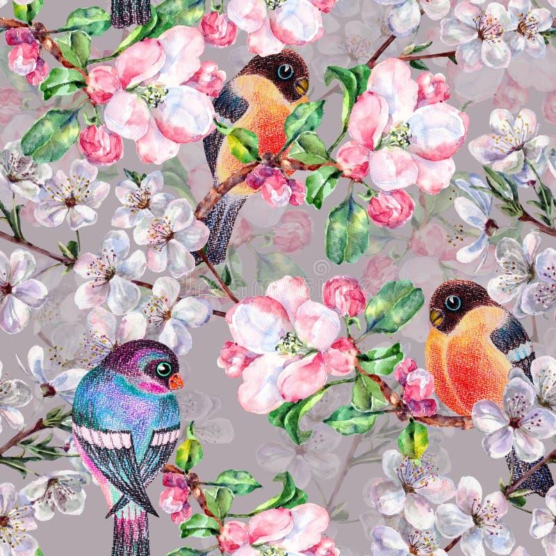 De waterverf bloeit appel met vogelgoudvink Bloemen Naadloos Patroon op Gray Background royalty-vrije illustratie