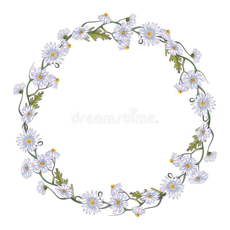 De waterverf bloeit kaderkroon de lente Kamilles en bladeren vector illustratie
