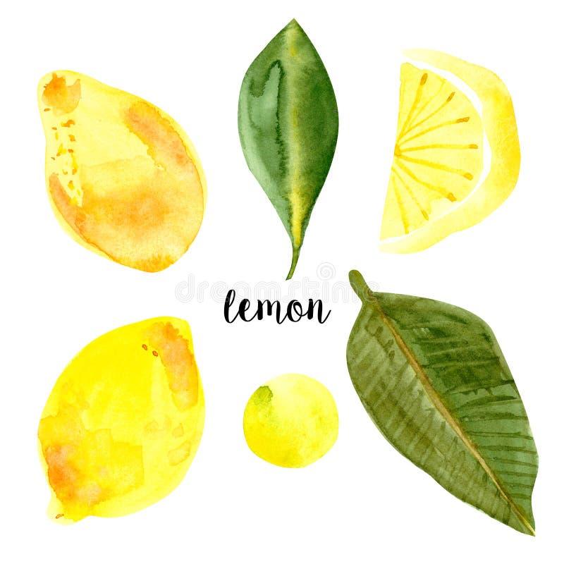 De waterverf van de citroeninzameling, embleem stock illustratie