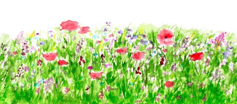 De Waterverf van de Bloemen van de zomer, het Naadloze Patroon van de Grens vector illustratie