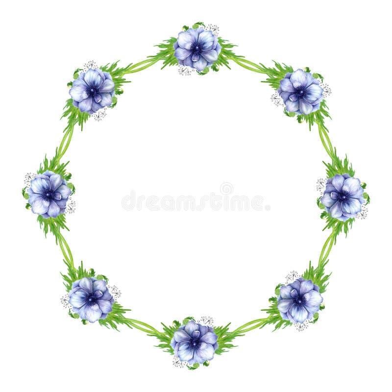 De waterverfanemoon bloeit kader De lentetakken met anemoonbloemen en veren vector illustratie