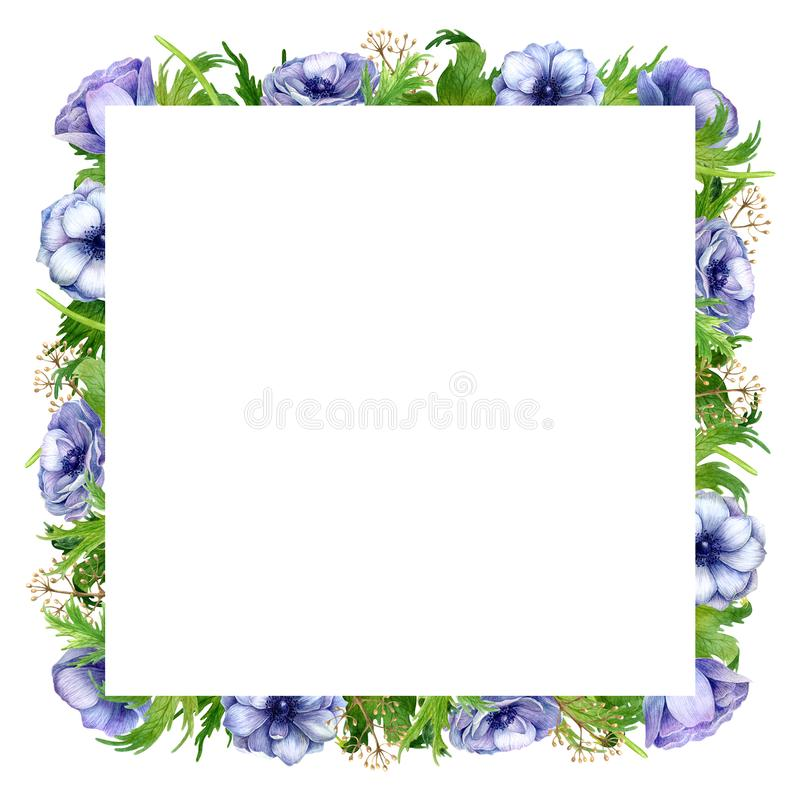 De waterverfanemoon bloeit kader De lentetakken met anemoonbloemen en veren stock illustratie
