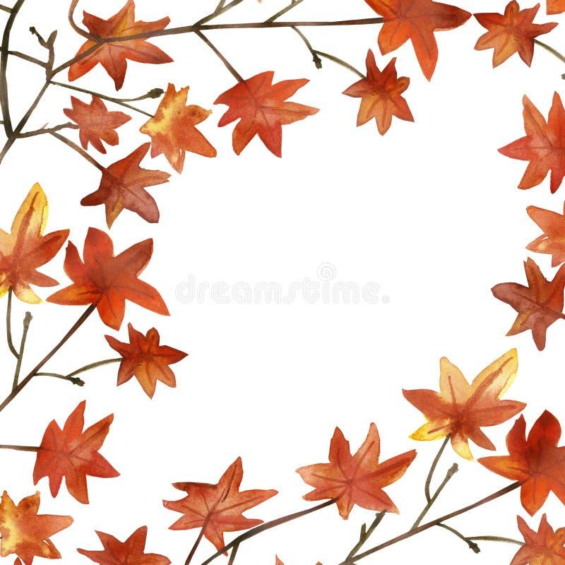 De waterverfhand schilderde de esdoorn oranje bladeren van de aardherfst op de bruine tak voor uitnodigingen en groetkaarten met  stock illustratie