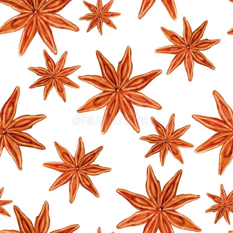 De waterverfillustratie van de steranijsplant op witte achtergrond, Hand wordt geïsoleerd getrokken naadloos badian patroon, Ontw vector illustratie