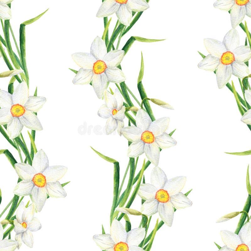 De waterverfnarcissen bloeien naadloos patroon De hand getrokken illustratie van de gele narcisgrens op witte achtergrond Bloemen royalty-vrije stock afbeelding