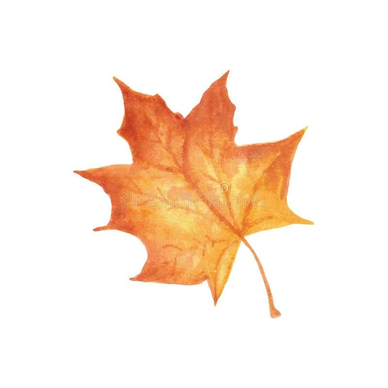De waterverftextuur van het de herfstblad het illustratiewerk vector illustratie
