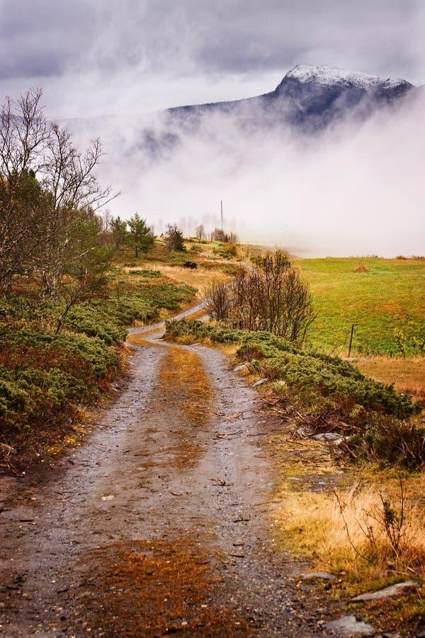 De weg? royalty-vrije stock fotografie