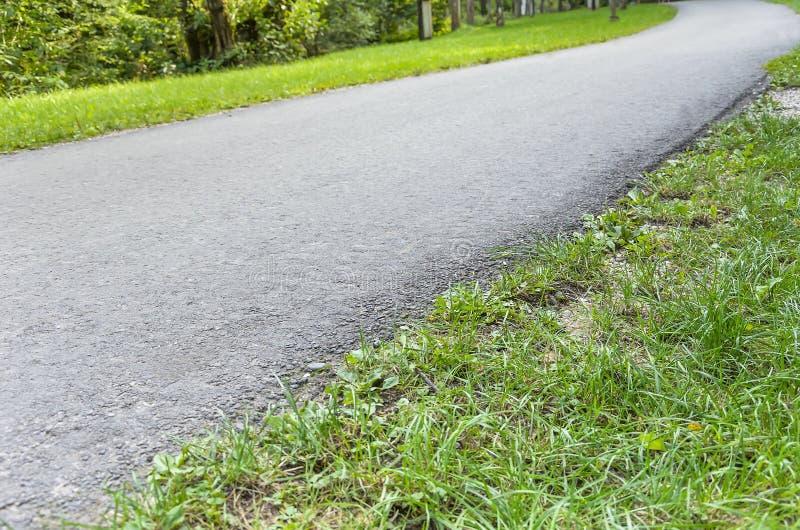 De weg aan het park royalty-vrije stock afbeelding