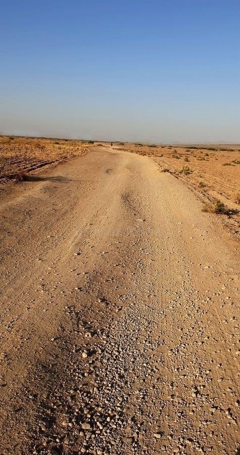 De weg buiten de stad royalty-vrije stock foto