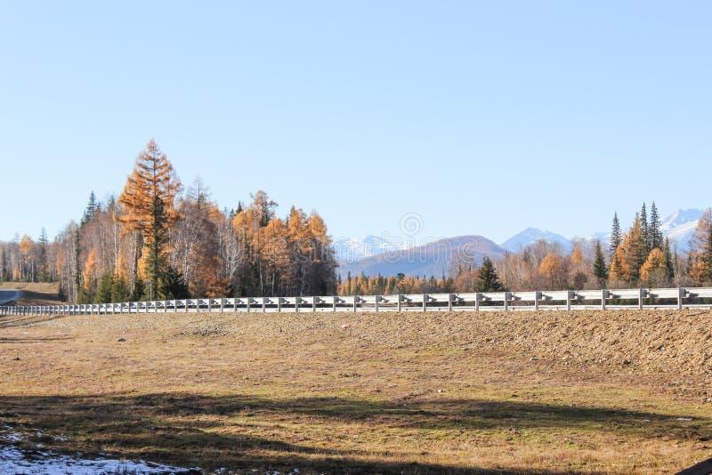 De weg in de de herfstvallei stock afbeeldingen