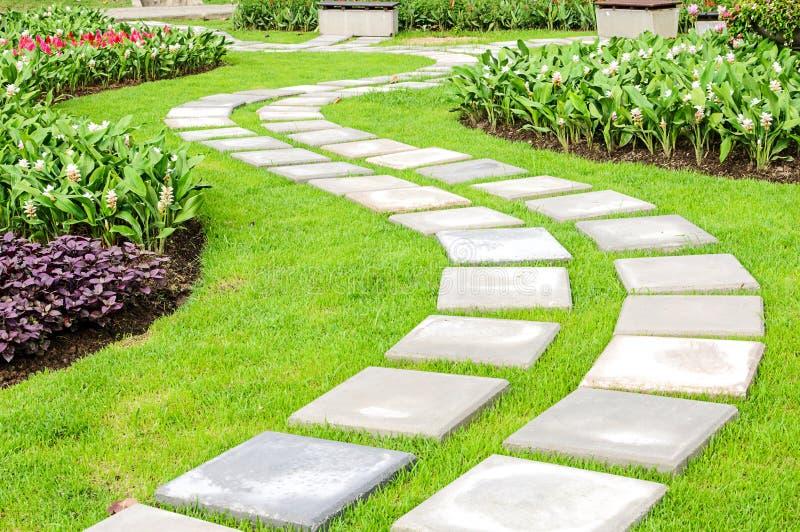 De weg in de tuin. stock foto's