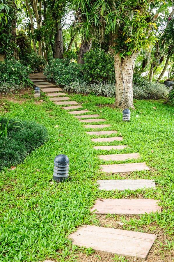 De weg in de tuin. stock fotografie