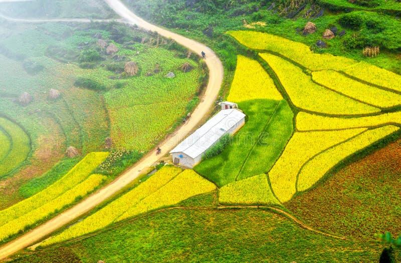 De weg die in het dorp van Lung Cu, Ha Giang, Vietnam leiden stock afbeelding