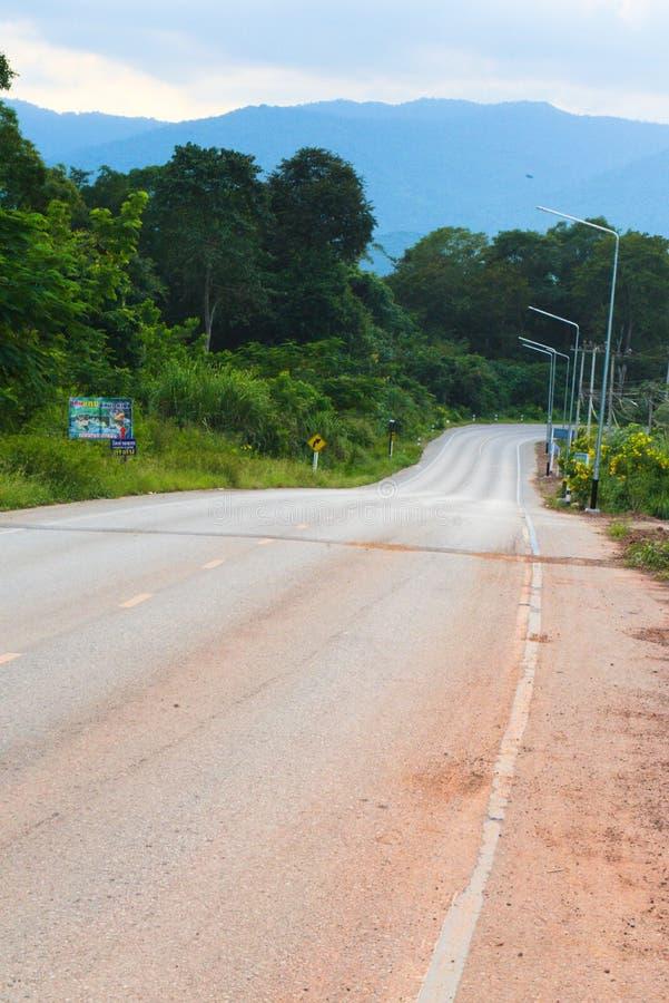 De weg die tot bos leiden royalty-vrije stock afbeelding