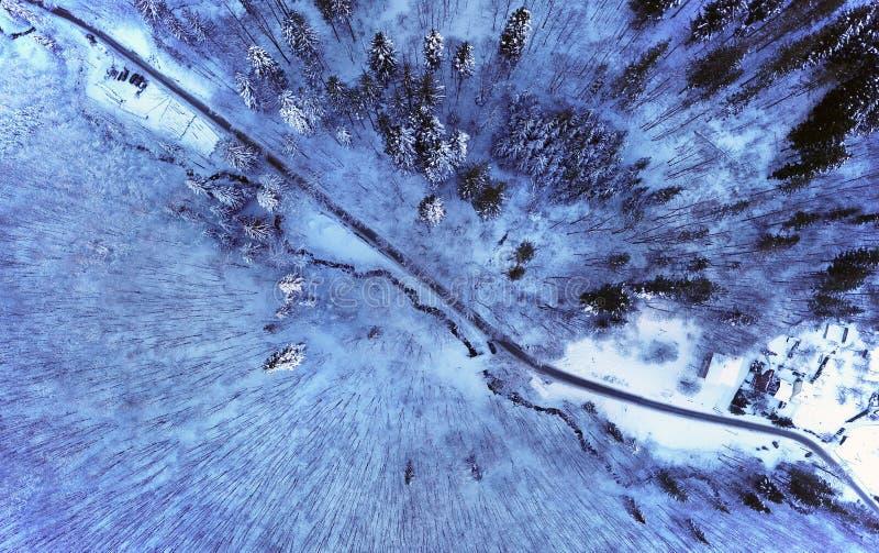 De weg die van de bergwinter bos kruisen stock foto