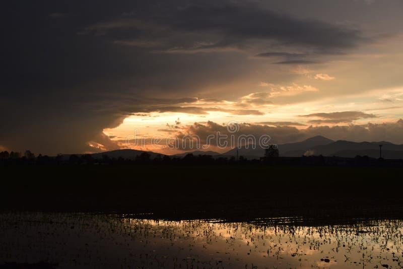 De weg en de gebieden overstroomden na een onweer van regen en hagel stock fotografie