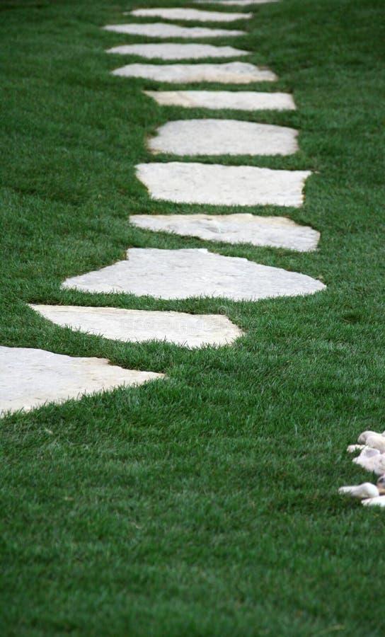 De weg en het gras van de tuin stock foto