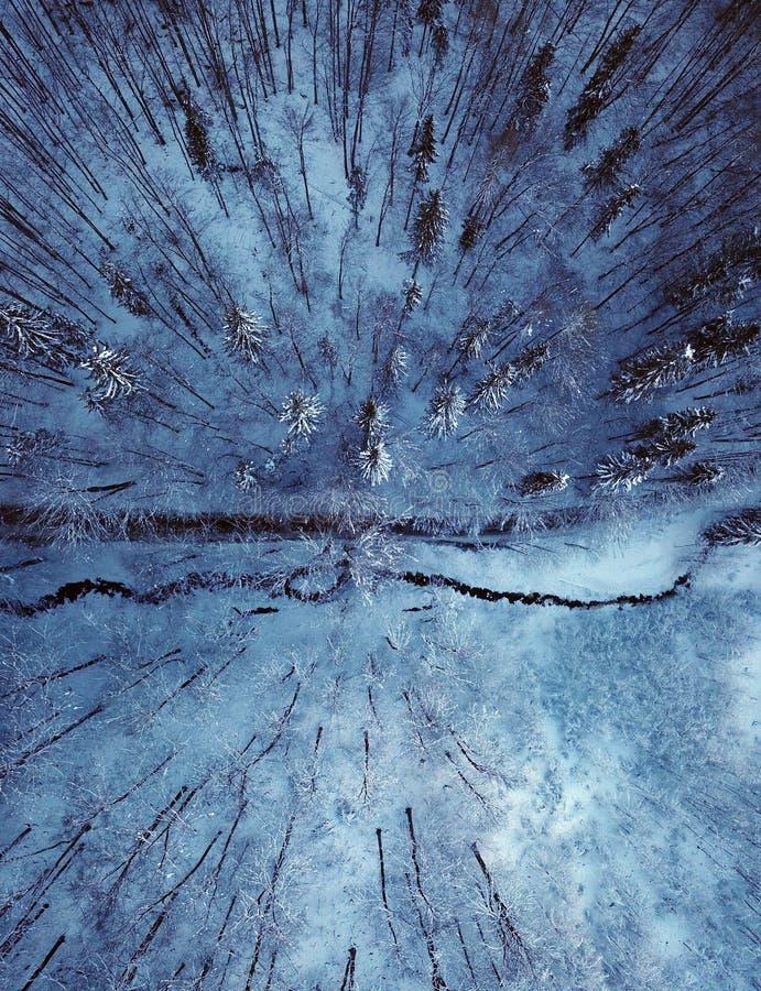 De weg en de rivier van de de winterberg stock afbeelding