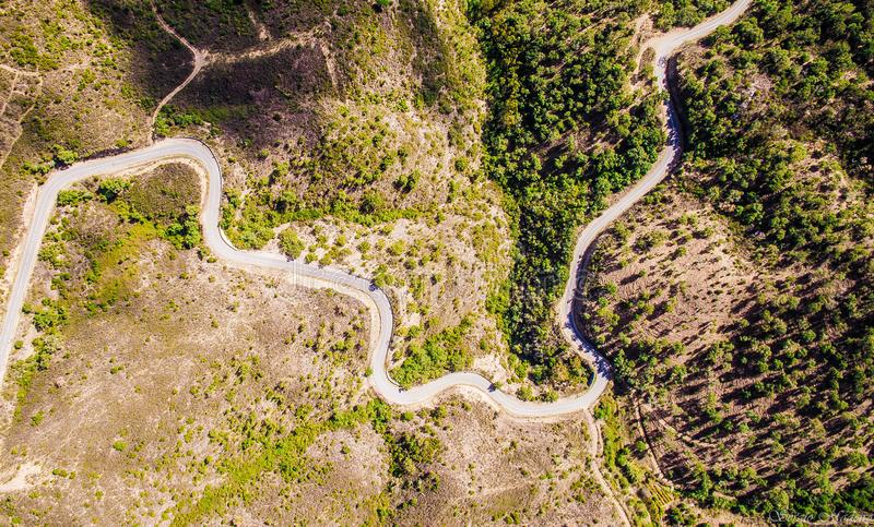 De weg en de slang royalty-vrije stock afbeelding