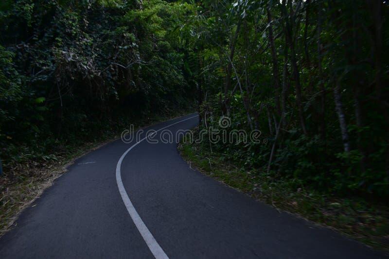 De weg is mooi stock afbeeldingen