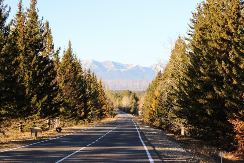 De weg op bergen royalty-vrije stock foto